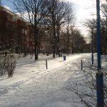 Boulevard Kastanienallee im Winter