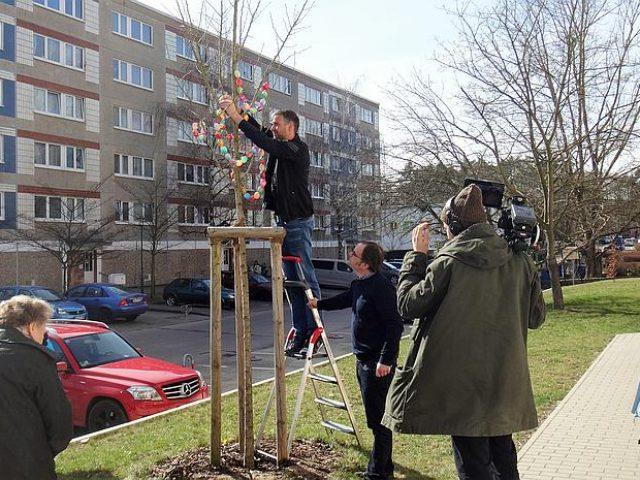 Osterbaum-Schmücken im Wohngebiet Brückenstraße