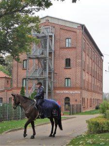 Internat für Reitschüler in der historischen Mühle Spiegelberg in Neustadt (Dosse)
