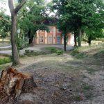 Schloss Freienwalde aus dem Park